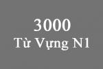 3000 Từ vựng N1